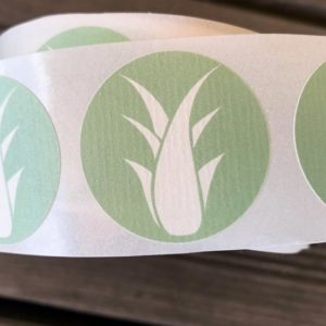 Aufkleber Aloe Vera Pflanze 35 x 35 mm